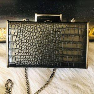 Zara Clutch or Cross Body Bag